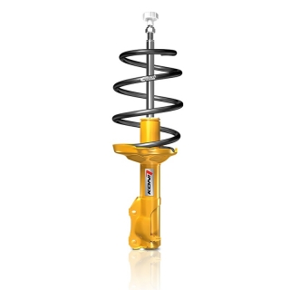 ST Suspensions | ST Sport Spring Kit